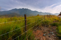 Rasenfläche mit dem Kinabalu am Hintergrund in Kundasang, Sabah, Ost-Malaysia Lizenzfreies Stockbild