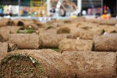 Rasengrasrollen stockfotografie