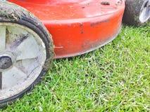 Rasenm?her, der gr?nes Gras im Hinterhof schneidet lizenzfreie stockfotografie