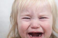 Rasgones gritadores de la emoción del pelo rubio del bebé del retrato Imagenes de archivo