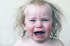 Rasgones gritadores del pequeño bebé del retrato emocionalmente Fotos de archivo libres de regalías