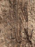 Rasguños de la roca Fotografía de archivo libre de regalías