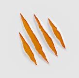 Rasguños o herida de las garras en el fondo de papel Imagenes de archivo