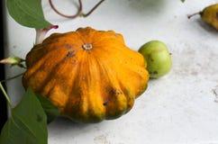 Rasgue las calabazas y las frutas del otoño en la tabla de madera Imagen de archivo