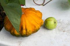 Rasgue las calabazas y las frutas del otoño en la tabla de madera Fotos de archivo