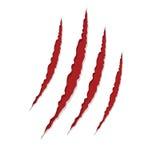 Rasguños de la garra aislados en blanco,  Imagen de archivo libre de regalías