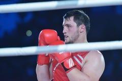 Rashid Kodzoyev auf dem Ring Lizenzfreie Stockfotografie