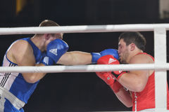 Rashid Kodzoyev vs Alexey Emelyanov (czerwień) Fotografia Royalty Free