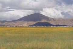 Raso do lago Titicaca. Fotos de Stock Royalty Free