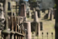 Rasos cmentarz obraz stock