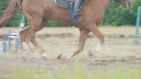Raspaarden en jockeys het springen over een hindernis Onduidelijk beeldeffect stock videobeelden