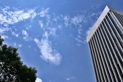 Raspador do céu Foto de Stock
