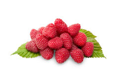 Raspberies on green leaves isolated. Raspberrieson green leaves  isolated on white background Royalty Free Stock Images