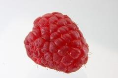 Raspberrie royalty free stock photos
