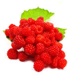 Raspberries. Macro photo of raspberries with leaves isolated on white Royalty Free Stock Photography