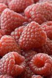 Raspberries. Fresh raspberries in macro shot royalty free stock image
