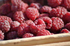 Raspberries. A little piece from a wooden box is visible Stock Photos