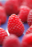 Raspberries Royalty Free Stock Photography
