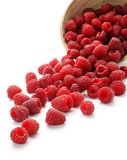 Raspberries. Fresh raspberries scattered on white background Royalty Free Stock Photos