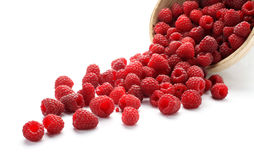 Raspberries. Fresh raspberries scattered on white background Stock Image