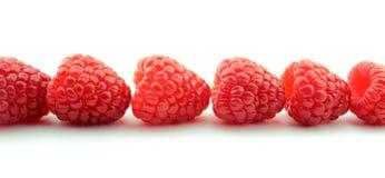 Raspberries. Raspberry fruits on white background stock photo