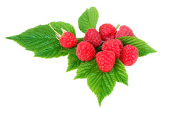 Raspberries. On white background Royalty Free Stock Photo
