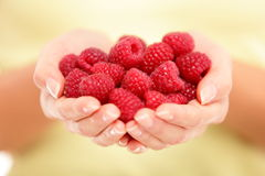 Free Raspberries Royalty Free Stock Photography - 26314207