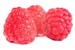 Raspberries. Group of three red raspberries on a white background Stock Photos