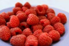 Raspberries. Sweet red raspberries on the plate, Rubus idaeus Stock Image