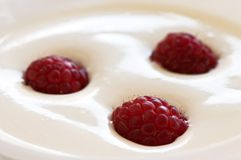 Raspberries. Three raspberries over some cream closeup Royalty Free Stock Photo