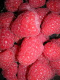 raspberries Fotografia de Stock Royalty Free