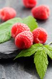 Raspberries Stock Photos