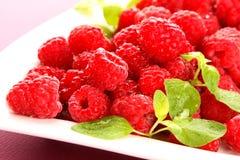 Raspberries. Very fresh and tasty raspberries royalty free stock photo