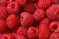 Free Raspberries Stock Image - 5756301