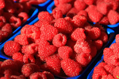 Raspberries Stock Photo