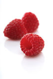 Raspberries backbround - close-up Stock Photography