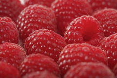 Raspberries backbround - close-up Royalty Free Stock Photography