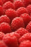 Raspberries Background Stock Photo