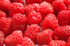 Raspberries background Royalty Free Stock Photo