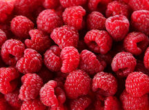 Raspberries background, close up, red Stock Images