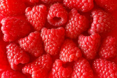 Raspberries background texture raspberry red Royalty Free Stock Image