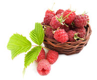 Raspberries in the basket. Basket with fresh raspberries and green leaves Stock Photos