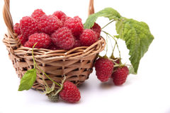 Raspberries in a basket and a few berries Royalty Free Stock Photos