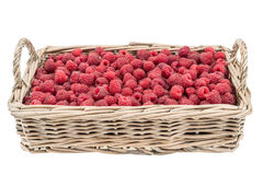 Raspberries in the basket isolated on white background.  Royalty Free Stock Photography
