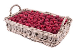 Raspberries in the basket isolated on white background. Selective focus Stock Photography