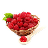 Raspberries in a basket on a white background. Raspberries in a basket isolated on a white background Royalty Free Stock Photo