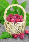 Raspberries in basket Royalty Free Stock Photos