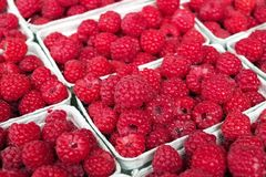 Raspberries. Baskets of raspberries side by side Royalty Free Stock Photo