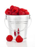 Raspberries berries in a metal bucket,. Isolated on white background Royalty Free Stock Photography