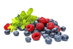 Raspberries and bilberries Stock Photos
